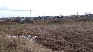 Земельный участок в Бурцево(12 соток)(, 2016-04-25T11:10:57.000Z)