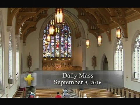 Daily Mass, Friday 9 September 2016