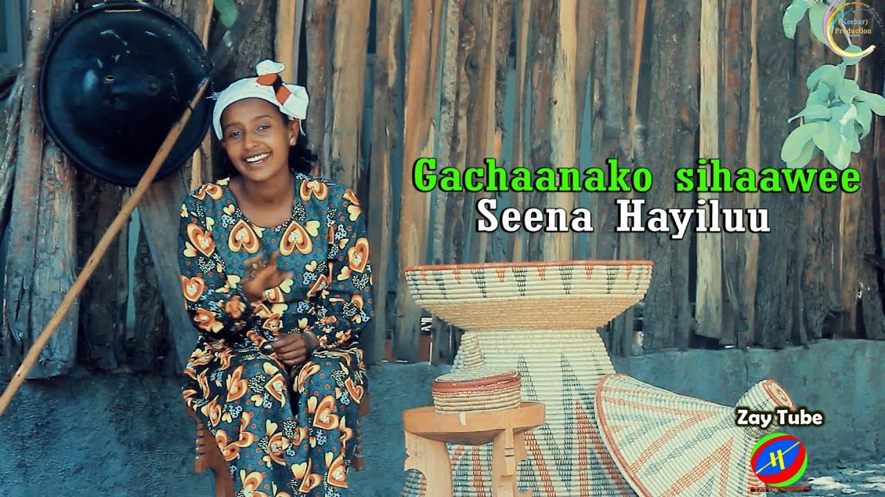 Download Seena Hayiluu - Gachaanako sihaawee - Neew Oromoo music - 2021