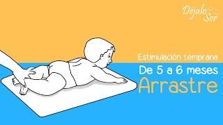 Estimulación temprana de 5 a 6 meses, ejercicios de arrastre.