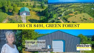 103 CR 8491, Green Forest   Branded