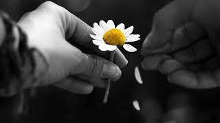 Gitme Gülüm - Şemsi Özçiçek