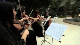 Оксана Матвеева .Скрипка на праздник.Астрахань.