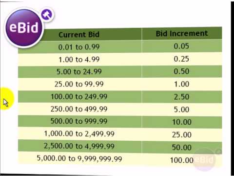 What Is A Bid Increment Ebid How To Video Youtube