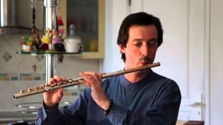 Reinecke - Flötenkonzert D-dur, Op. 283, 1. Allegro Molto Moderato - Orlando Cela, Flöte