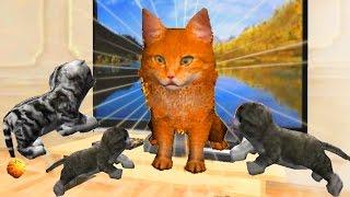 Играем в СИМУЛЯТОР КОТА 🐱🐱🐱 #24 Рыжий Кот и котята мульт-игра про котят развлекательное видео