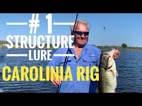 Carolina Rig For Big Bass