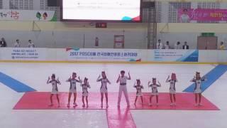전국장애인아이스하키대회/팝콘/서울올스타치어/탄천아이스링…