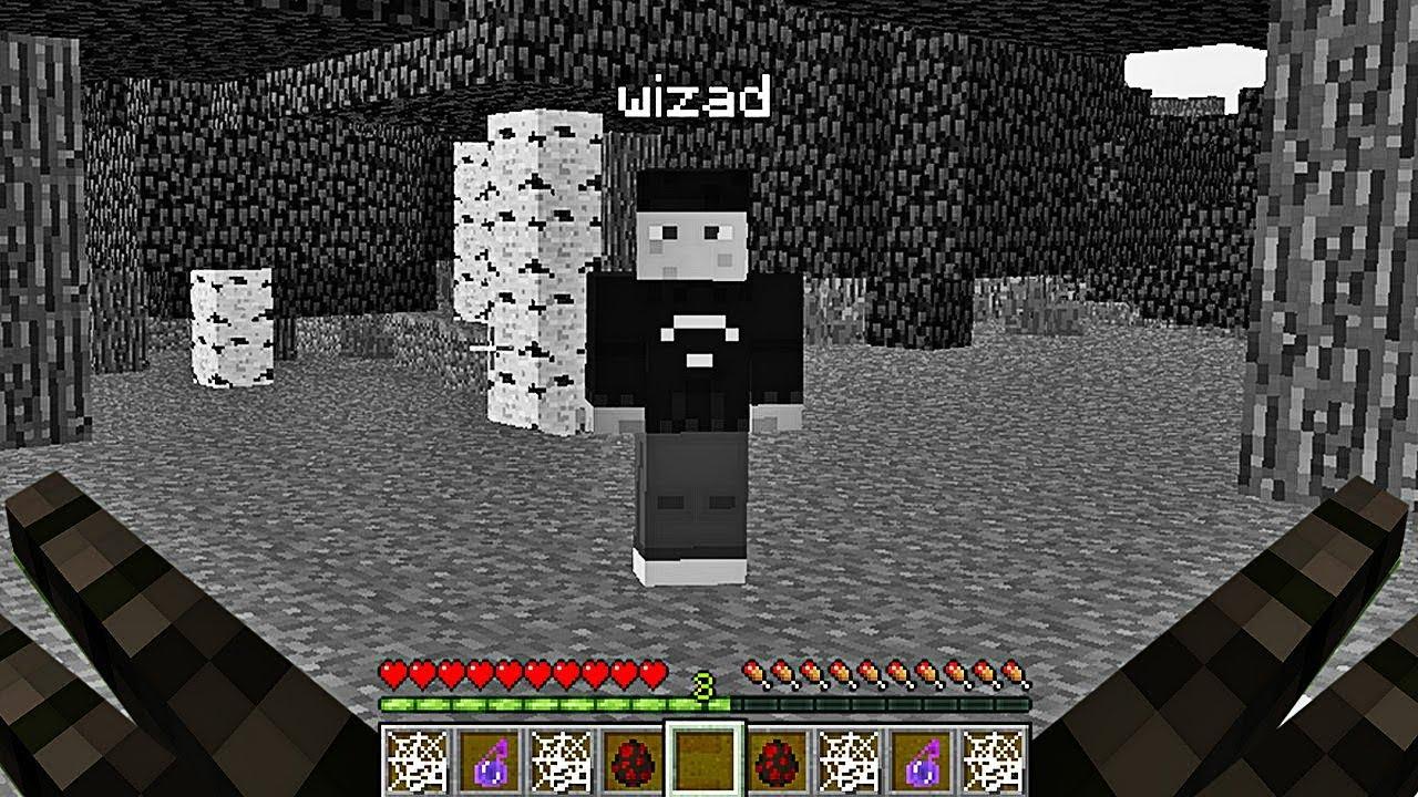 Jouer A Minecraft En Araignee Minecraft Youtube