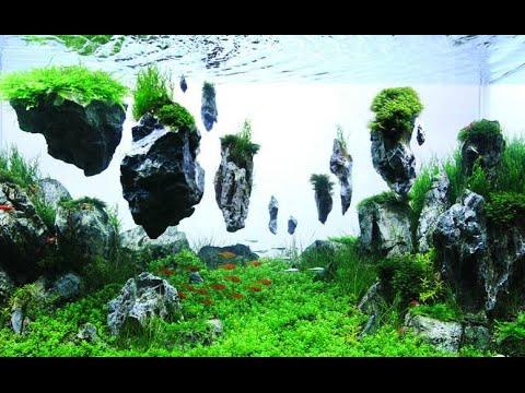 Декор 180 литрового аквариума