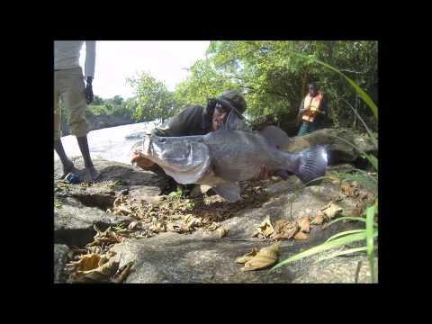 Fishing in Uganda for Nile perch June 2014