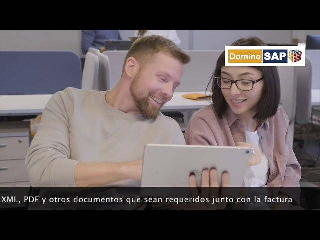 Portal de Proveedores - DominoSAP