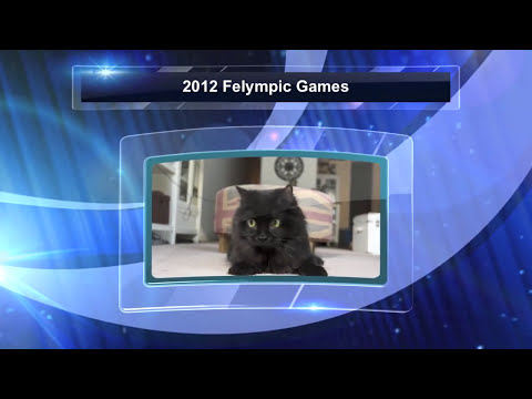 Part 3 of the 2012 Felympic Games!
