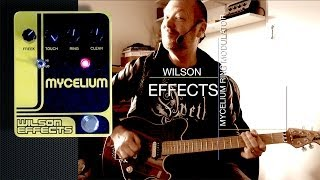 Wilson Effects: MYCELIUM Ring Modulator - (part)Demo