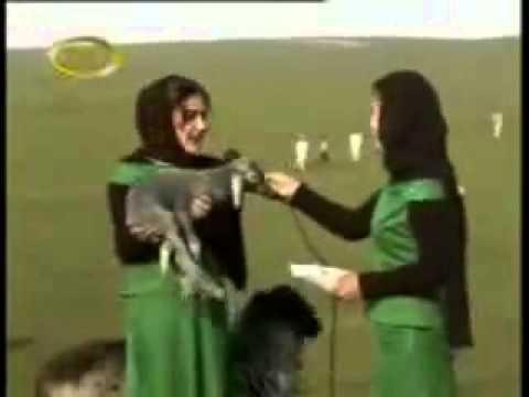 بادية العراق