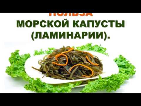 Морская капуста: состав, польза, свойства, морская капуста