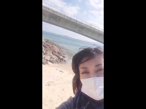 初めまして。ローバー美々と申します。IN沖縄♡