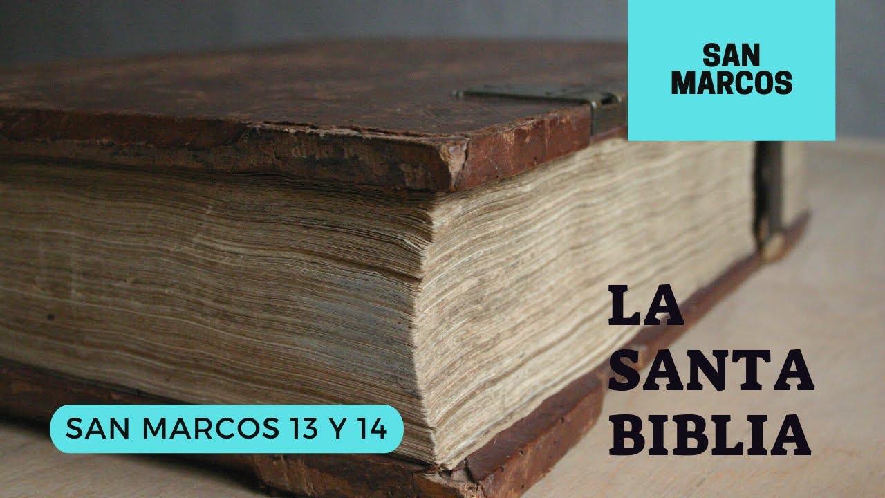Evangelio según SAN MARCOS 13, 14 (DÍA 258) LA SANTA BIBLIA || Audiolibro ||