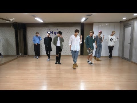 BTS (방탄소년단) - 좋아요 Pt.2 (I Like It Pt.2) Dance Practice (Mirrored)
