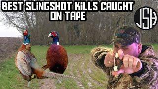 Catapult hunting kill shots