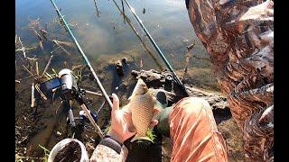 Рыбалка на ПОПЛАВОК в МАЕ Ловля карася в тихом лесном заливе р Днепр Поклевки карася