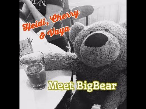Heidi, Cherry & Vaya Meet BigBear - Children's Bedtime Story/Meditation