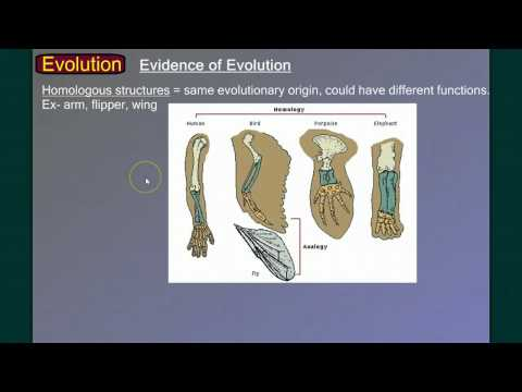 Evolution Part 1: Introduction and Evidence