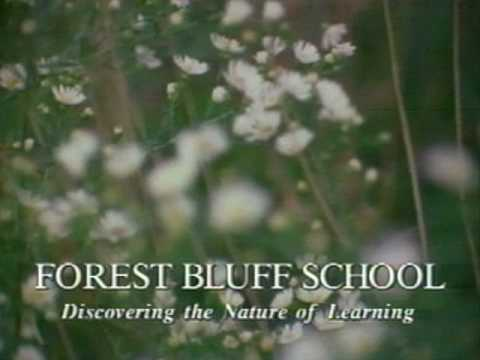Forest Bluff Montessori School - Discovering the Nature of Learning