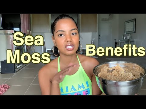 Sea Moss Benefits & Why I Started Using It