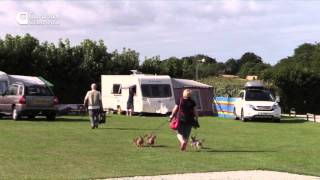 TRAVEL & CAMPSITES South Cornwall, Polborder House Caravan and Camping Park