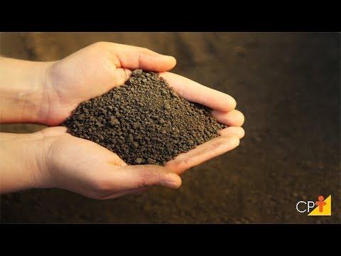 Clique e veja o vídeo Curso a Distância Manejo de Irrigação - Manejo pelo Controle de Umidade - Cursos CPT
