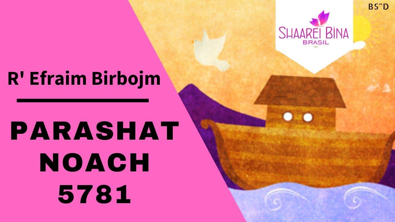 Parashat Noach 5781/ 2020