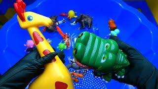 Игрушечные животные в воде | Обучающее видео для детей | Животные зоопарка | Игрушки
