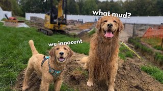 Tucker Shows Todd H๐w to Get Muddy
