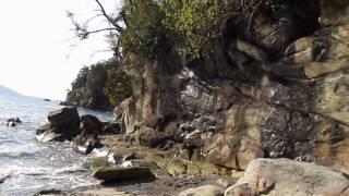 Larrabee State Park & Clayton Beach in Washington