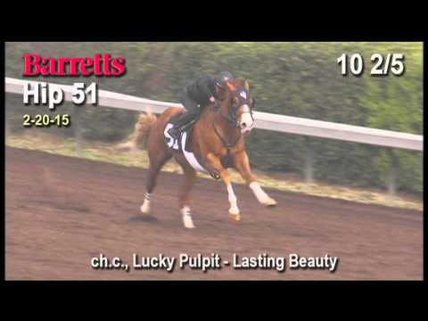 Lucky Pulpit colt named Looks Pretty Lucky Breezes Barretts 2-year-old Sale Feb 2015