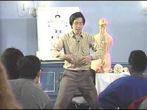 Iron Shirt Chi Kung I