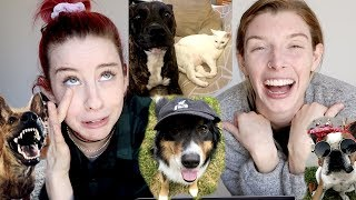 REACTING TO YOUR PETS!!