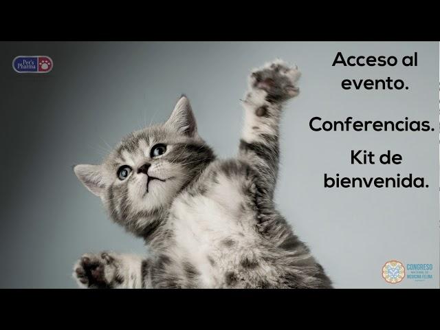 Promoción para el Congreso de Medicina Felina en Nayarit 2020