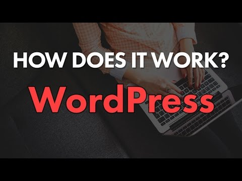 How Does WordPress Work? File Structure & Hierarchy