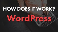 How Does WordPress Work? File Structure & Hierarchy Explained