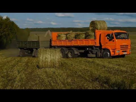 """Farming Simulator 17 КАРТА""""ОЗЕРНА""""Бригада играет.Все сначала.Развитие.Косим траву.Прямой эфир"""