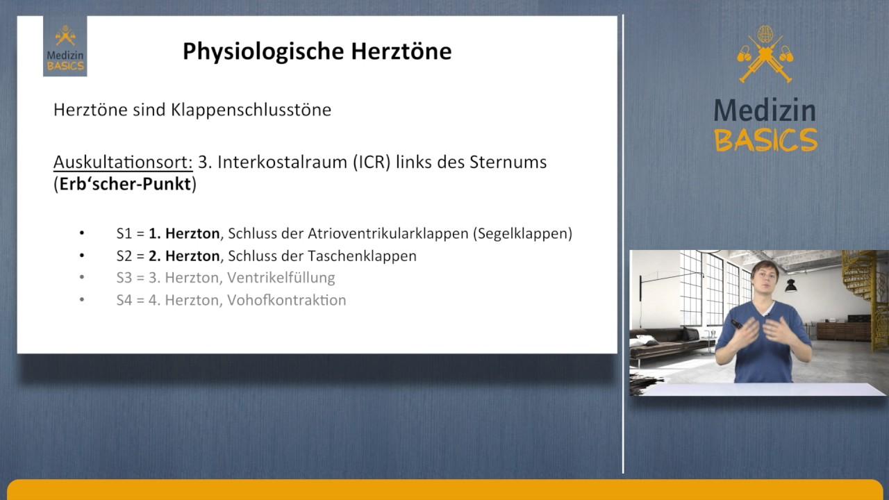 Ungewöhnlich Efeu Tech Anatomie Und Physiologie 101 Buch Ideen ...