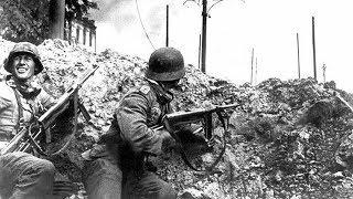 КОП по ВОЙНЕ. Разведка. Немецкие блиндажные городки. Нашли следы Waffen-SS . Фильм 80.
