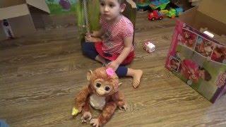 #Смешливая #обезьянка как у #Miss #Katy # от фирмы #FURREAL FRIENDS #HASBRO из магазина bobber