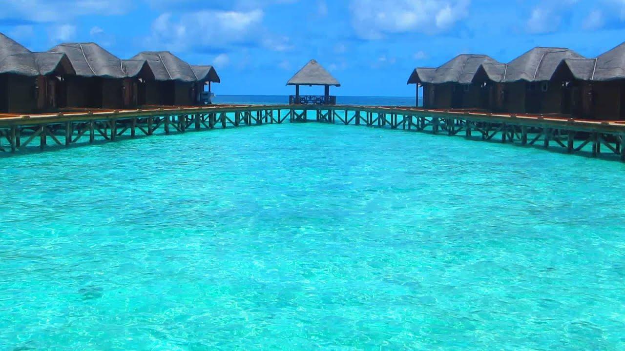 Islas maldivas septiembre 2014 ver nica janowicz youtube for Mejores islas de maldivas