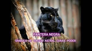 PANTERA NEGRA -Símbolo de Viagem Astral Cura e Poder/Arquétipo.