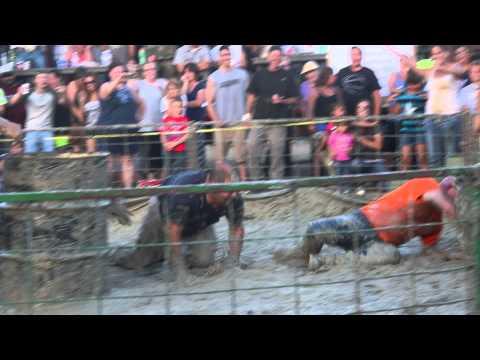 Pig Wrestling 2015