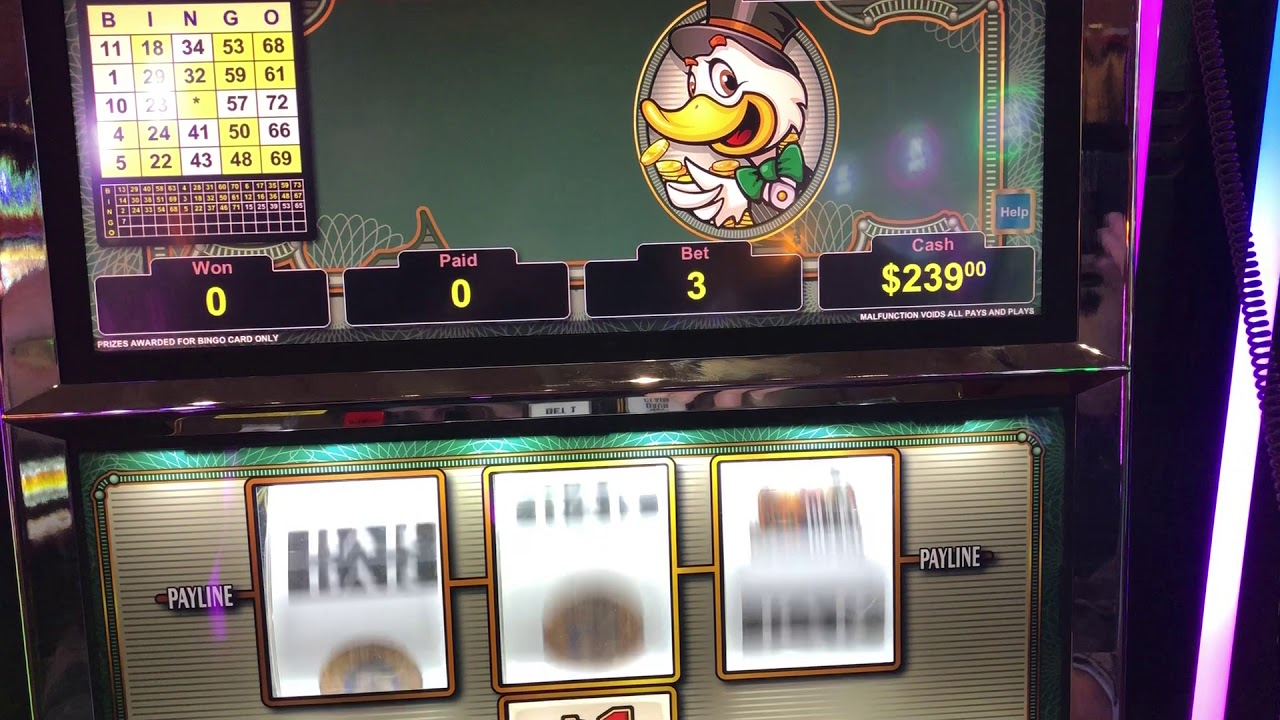 Bingo Patterns On Slot Machines