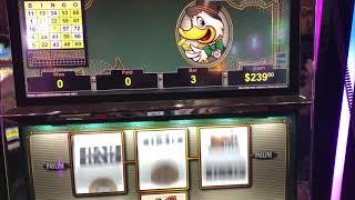 "VGT Slots ""Lucky Ducky"" $3 Progressive - Lucky 7 & Tee Bingo Patterns Regular Play Choctaw"